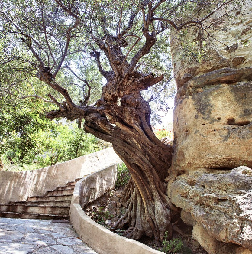 Local Hideaways Greece